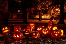 jackolanterns-carved-pumpkins