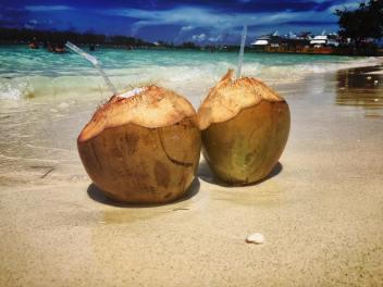 jessi f coconuts.jpg