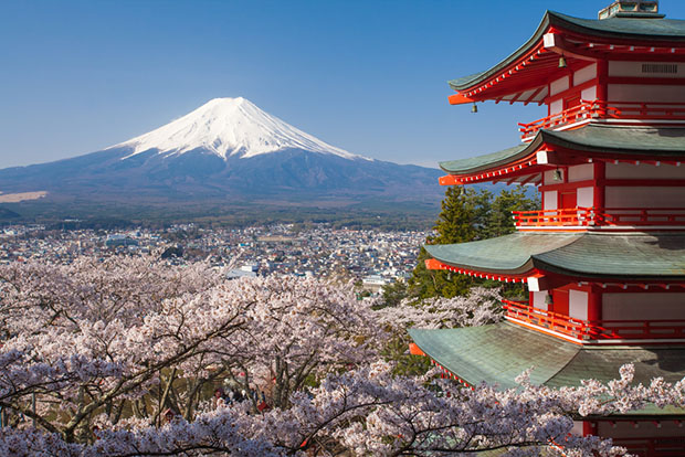 cerisiers-fleurs-sakura-hanami-Japon-16