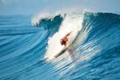 tina surf