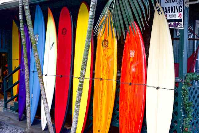 assorted colors of surfboard