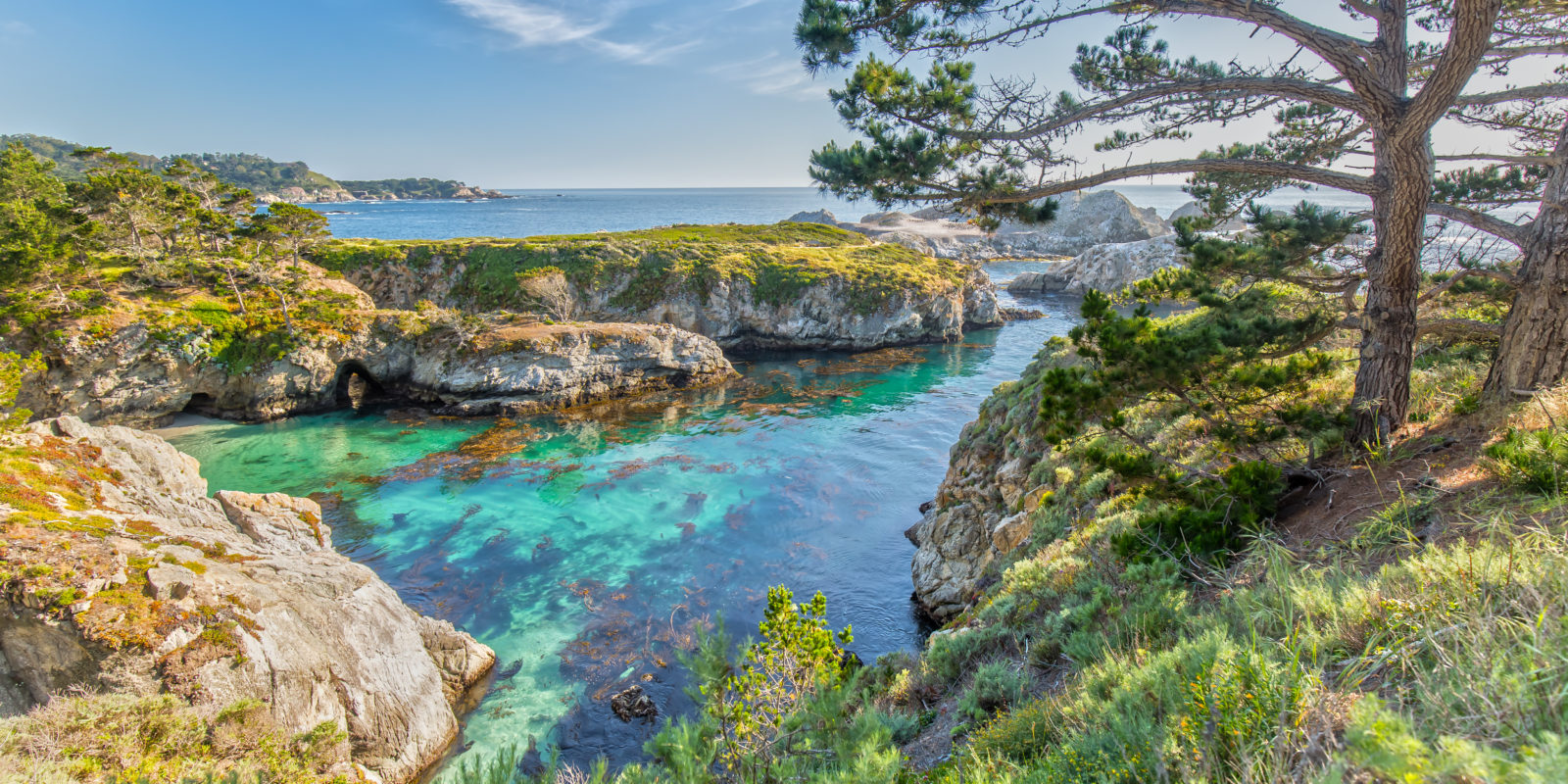 Point Lobos State Reserve at Highway 1 in California
